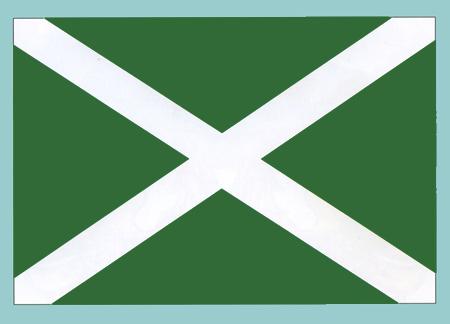 флаг таможни